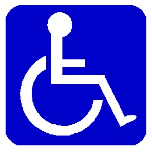 W3C Disability Access
